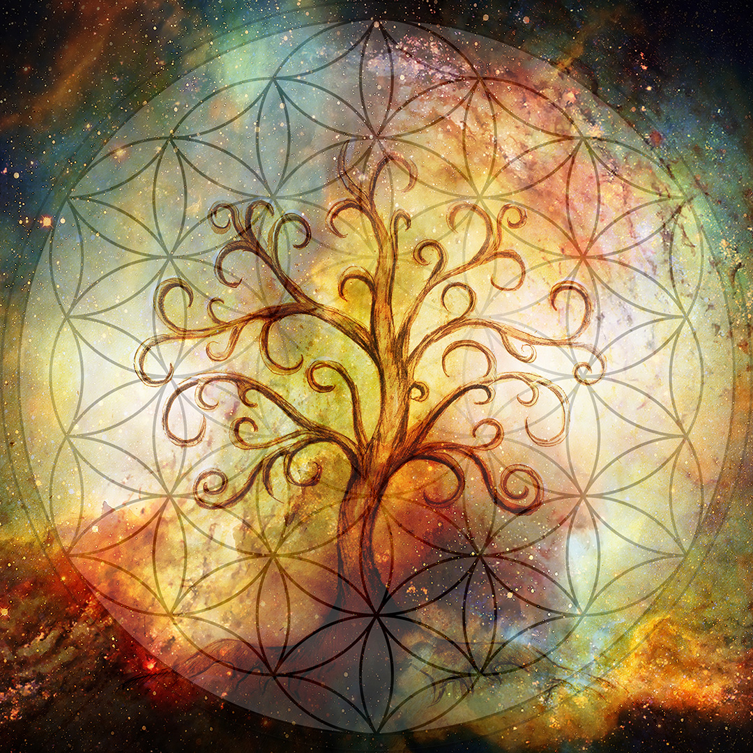 divine-reconnections-tree-of-life-home-image-01